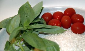 Orzo Caprese Ingredients